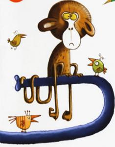 scimmietta nika